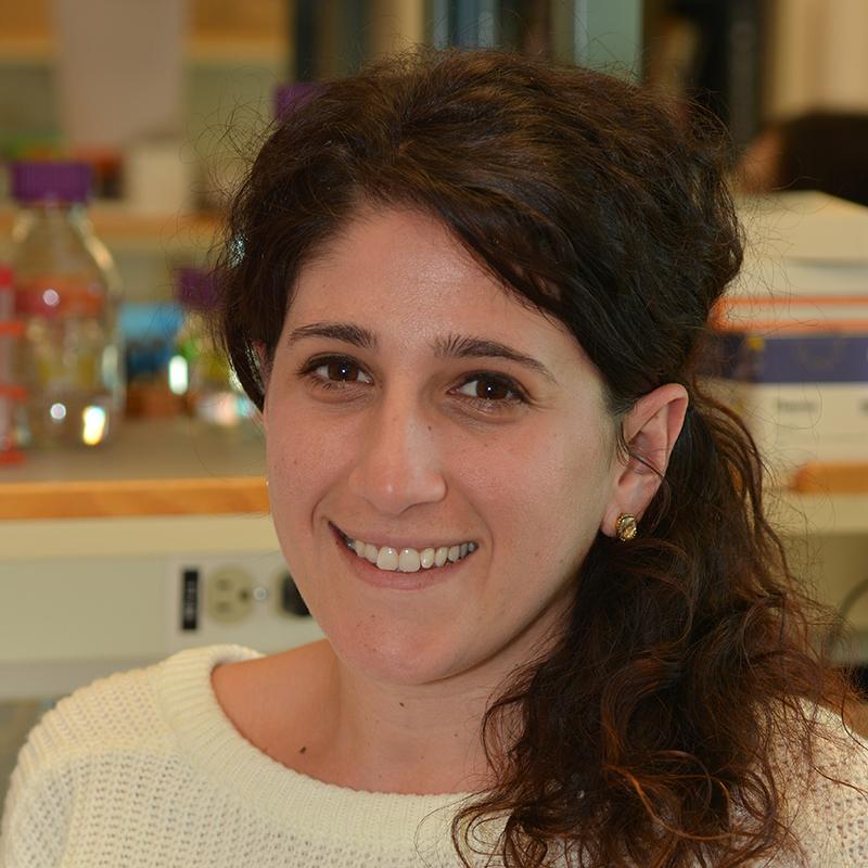 Amanda Lorenzian